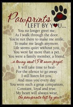 I can't even read this right now and think about losing my pup.