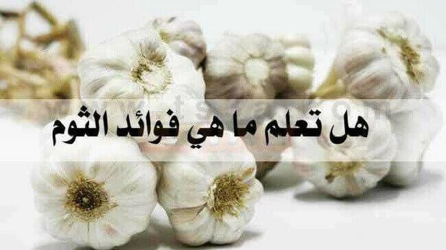 ما فوائد الثوم موضوع يهمك Garlic Blog Blog Posts