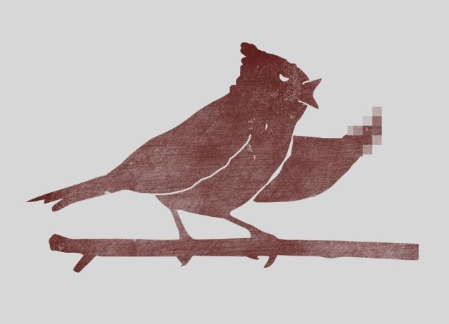 Givin' the bird.: Digital Art, Fword Art, Art Prints, Funnies Shit, F Word Angry Birds, Threadless Prints, Products, Funnies Stuff, Birds Design