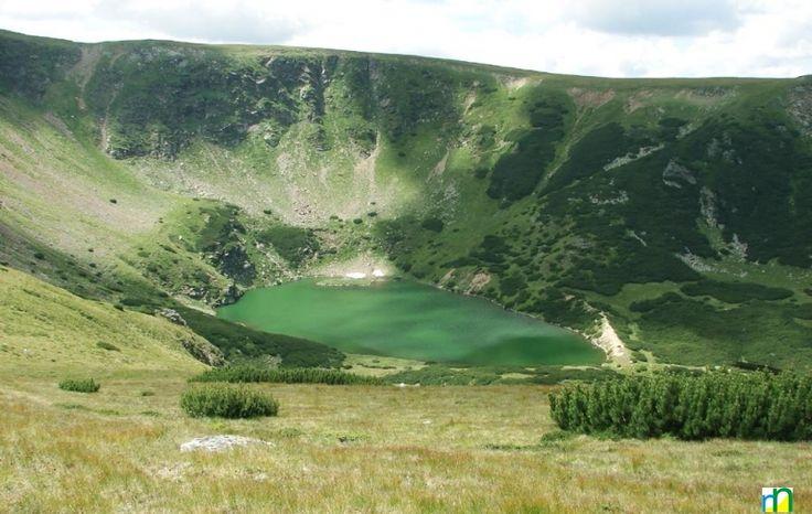 CINDREL- ROMANIA