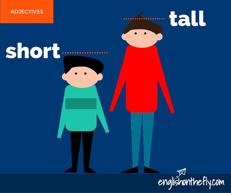English vocabulary for ESL and EFL students. Short and Tall