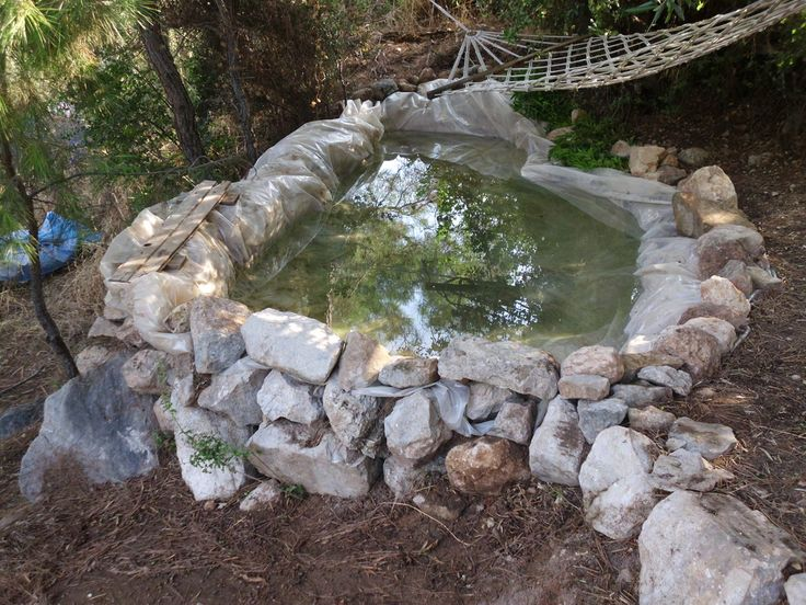 The new, cool natural pool.
