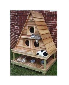 Kedi Kulübesi - Kedi Evi Resmi