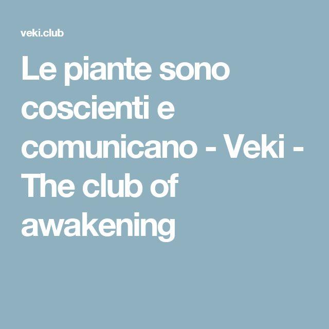 Le piante sono coscienti e comunicano - Veki - The club of awakening