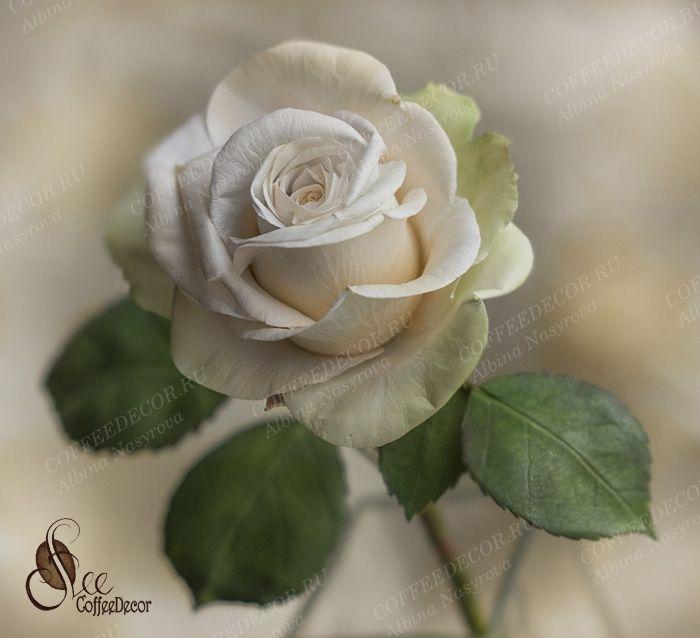 мастер-класс Роза с фактурными лепестками Peach Avalanche Зефирный шелковый фоамирана цветы из фоамирана