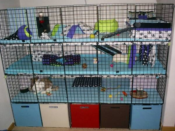 Homemade rabbit cages look at that good ideas for Coroplast guinea pig cage for sale