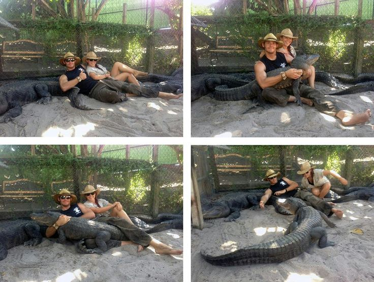 ashley gator boys hot porn