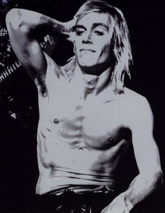 iggy, iggy pop, the stooges, stooges, rock, punk, music, photo