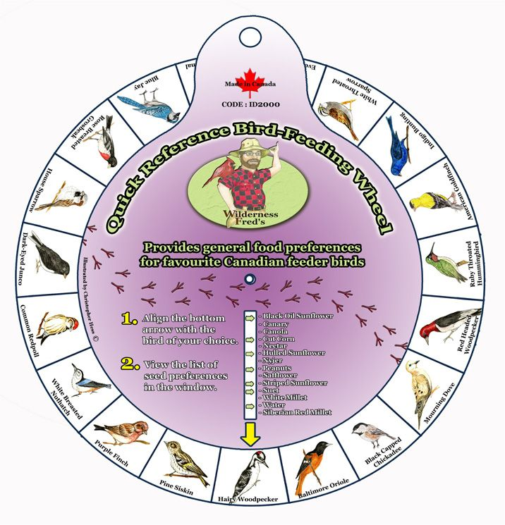 "ID2000  Bird Identification wheel. Backyard Bird Feeding Guide Identification Wheel. Turn to set arrow at type of bird. Read food preference. Hangs. Approx. 9"" Diameter.  English and FrenchReconnaître les oiseaux"