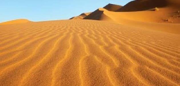 بحث عن البيئة الصحراوية وخصائصها Desert Environment Environment Deserts