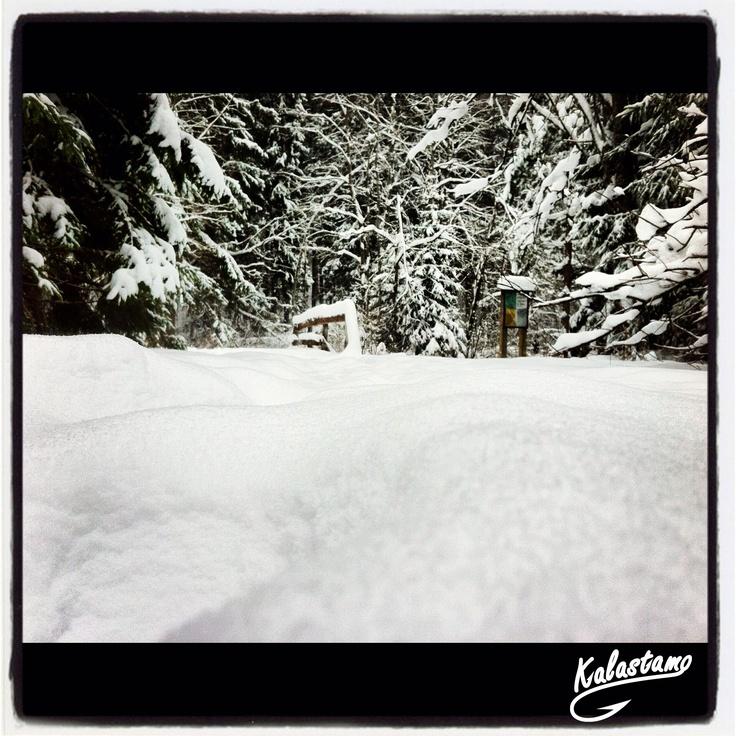 Snow - www.kalastamo.com - Finland