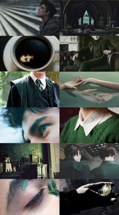 The Noble and Most Ancient House of Black - Regulus Black