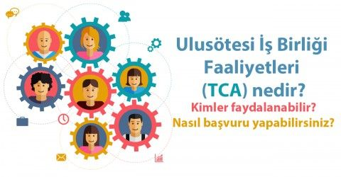 Ulusötesi İş Birliği Faaliyetleri (TCA) nedir