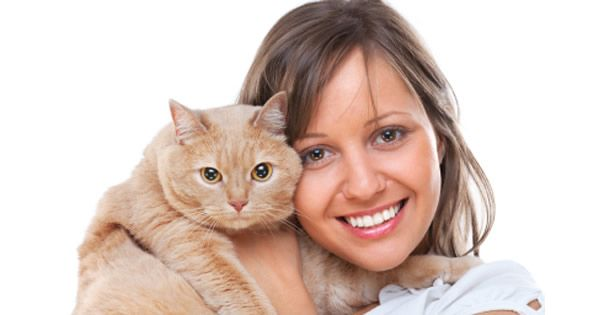 The Most Common Diseases in Cats