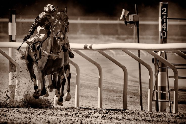 Horseracing -Close by Anders Stangl on 500px