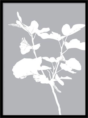 Plakat med hvide figenblade på grøn baggrund. Posters og plakater. www.desenio.dk