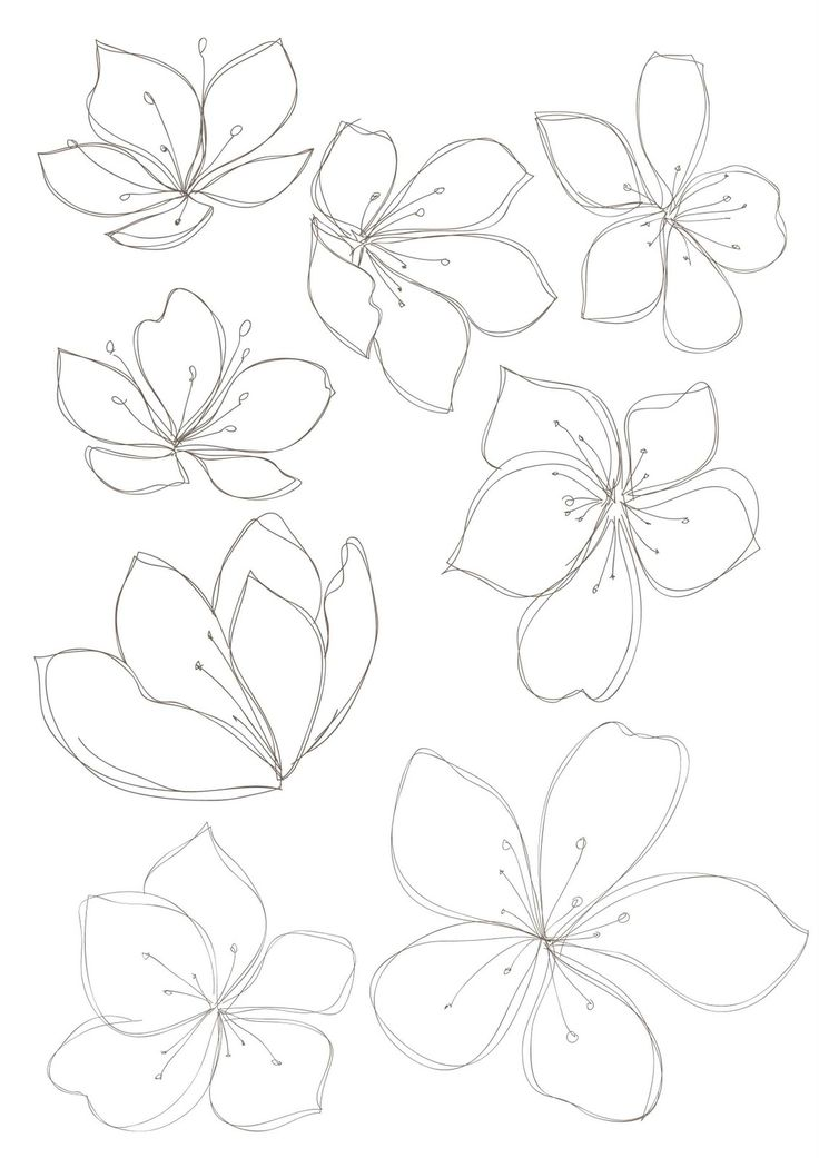 Line Drawing Violet : Bobbie print floral drawings black and white