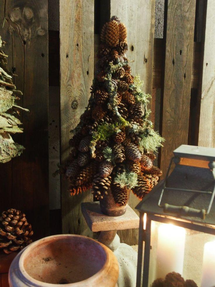 En flok forskellige juletræer….. | Bruun's Have