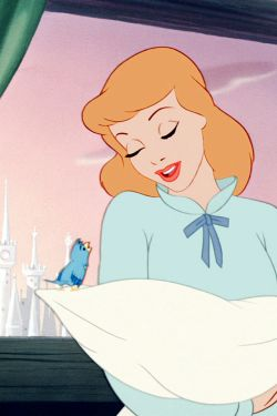 1000 Images About Cinderella 1950 2002 2007 On Pinterest