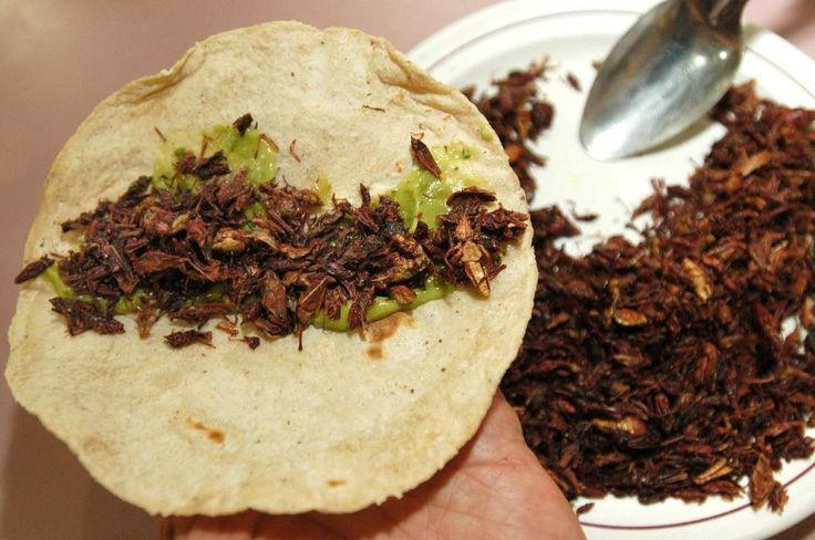 Top WOW: nuestra selección de los mejores restaurantes de Oaxaca