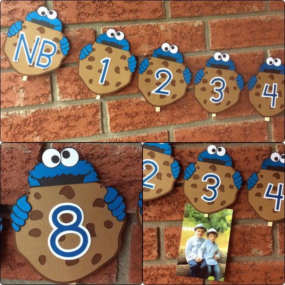 Cookie Monster 1st year photo banner - Cookie Monster Photo banner - NB -12 photo banner - First year milestones - first Birthday