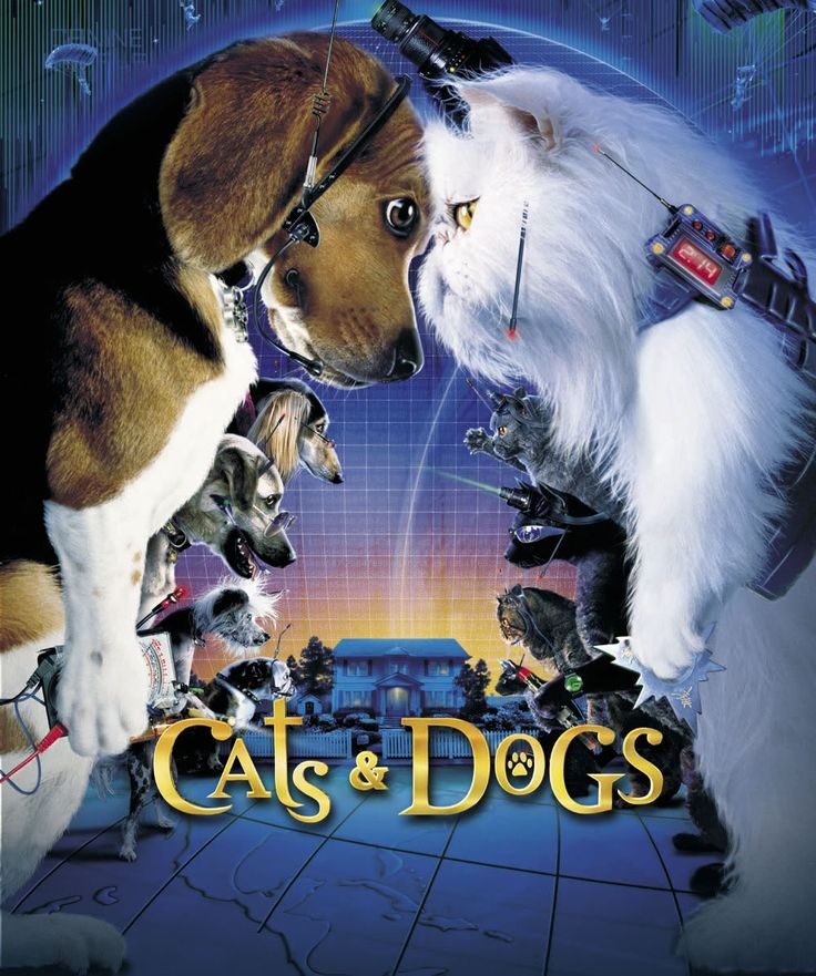 Cats Dogs 2001 And Cats Dogs The Revenge Of Kitty Galore