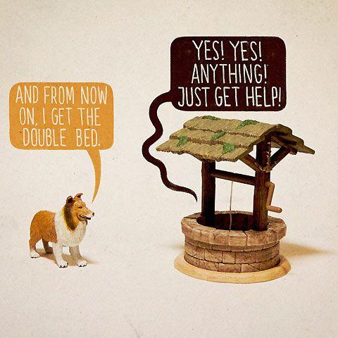 Run Lassie...run!Photos, Ales Lewis, Art, Upper Hands, Funny Bones, Funny Stuff, Humor, Dogs Rules, Toys Stories