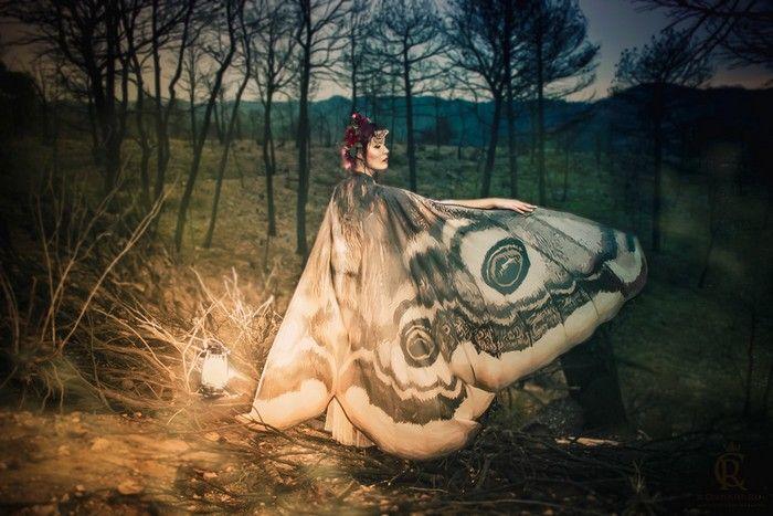 Фантастические шали «крылья бабочки» от CostureroReal