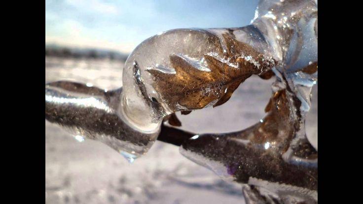 Winter, nature, snow, photo, ice, winter forest. Зимние фотографии, слайд шоу снежная зима, обледенение, сосны.