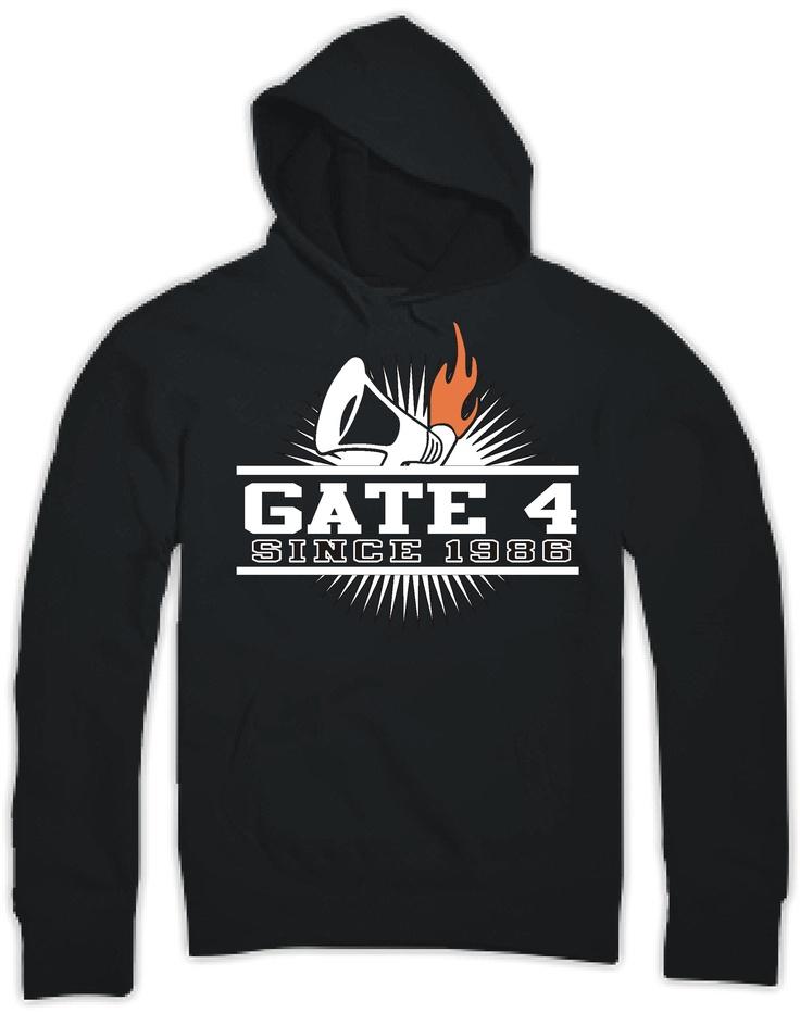 modern gate4