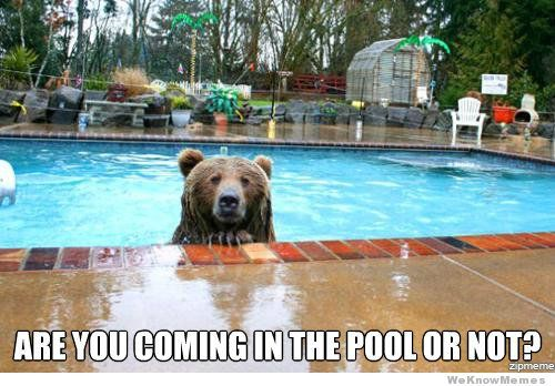 17 Best Funny Pool Memes Images On Pinterest Cool Things Funny Pics And Funny Stuff