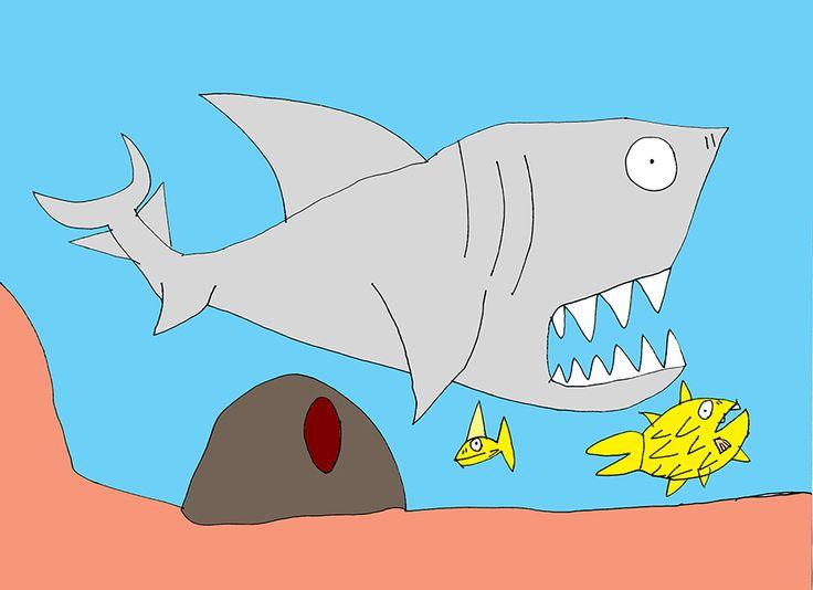 rekin i rybki