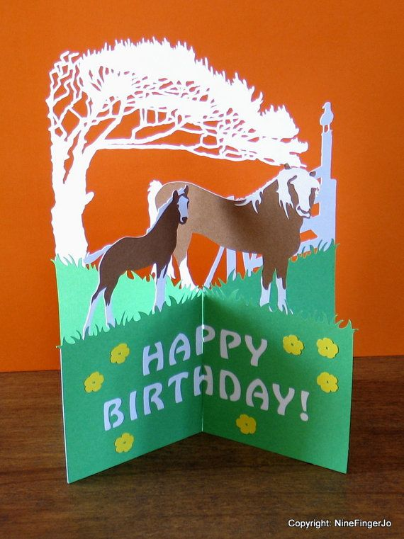 Horses Birthday Card Mothers Day Happy Easter Fathers Pop Up Horse Farming Thank You Cards