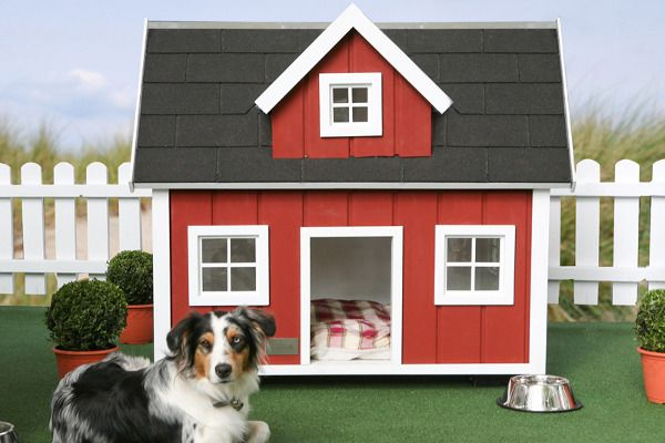 Hundehaus Farm Dog House--> Farm life suits dogs quite well, whether you live on a farm or not.  The Hundehaus Farm Dog House gives a sense of farm living to the pup in your family, with traditional red outer walls, a shingled roof and small, paned glass windows.  Inside, your dog can rest comfortably on a flannel dog bed, looking out at its pasture when its not counting sheep within.