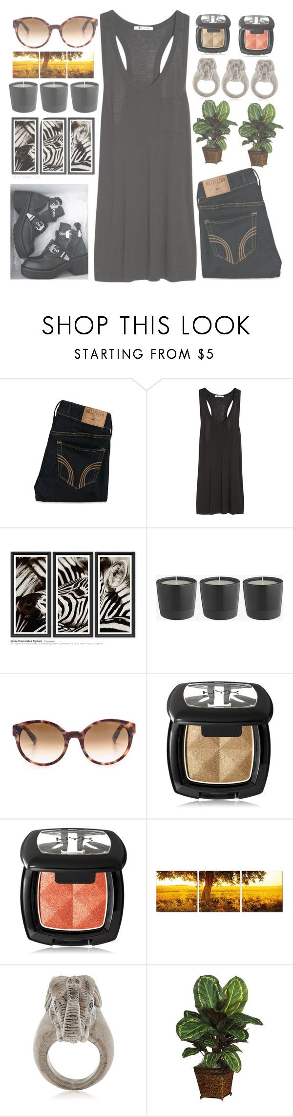 """""""Untitled #333"""" by chantellehofland ❤ liked on Polyvore featuring Hollister Co., T By Alexander Wang, Trowbridge, Etnia Barcelona, NYX, Elementem Photography, Nach and Nearly Natural"""