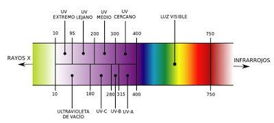 EQUIPOS DE LABORATORIO DE BIOQUIMICA - Informe de laboratorio #2 Bioquímica I
