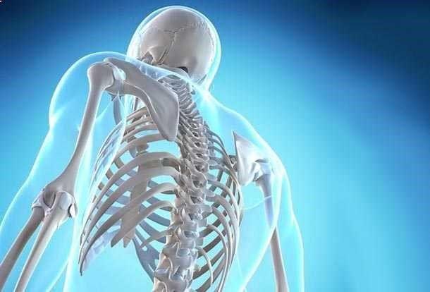 PROBLEMAS EN LOS HUESOS Y SU RELACIÓN EMOCIONAL Los huesos, por ser los elementos constitutivos del esqueleto, aseguran la estabilidad de la estatura...