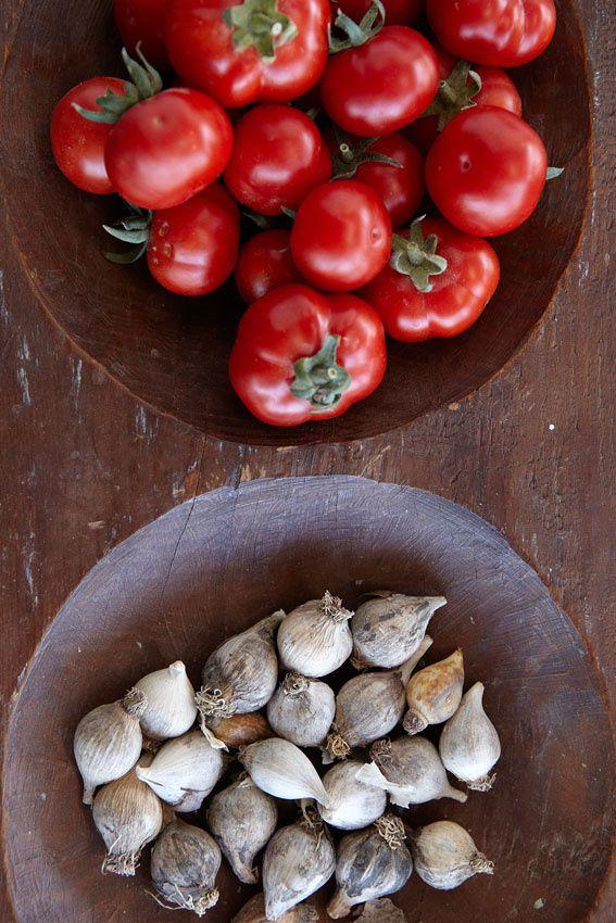Tomatinia (greek cherry tomatoes) from Santorini''