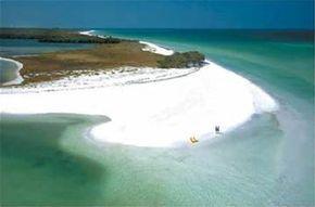Calidesi Island State Park, Pinellas County, Florida