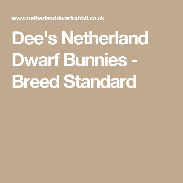 Dee's  Netherland Dwarf Bunnies - Breed Standard