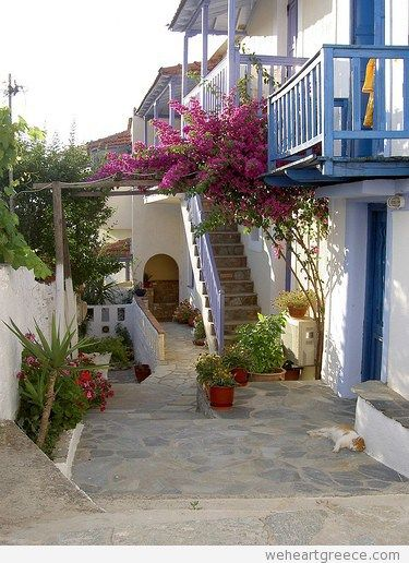 Chora (Alonissos) with a sleeping cat