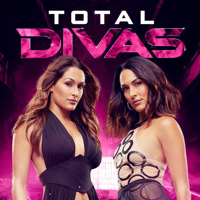 Brie Bella's Pregnancy, Paige's Engagement and Much More: Here's What the Total Divas Stars Have Been Doing Since Season 5