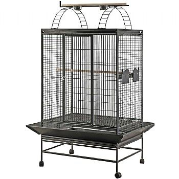 Get £30 off this Barcelona Play Top Parrot Cage. Was £249.99, now £219.99. It has everything your Parrot wants from a cage, with feeders, perches and plenty more. Suitable for #AfricanGreys, #Amazons, EclectusParrots and #Cockatoos. Click the picture for more details.