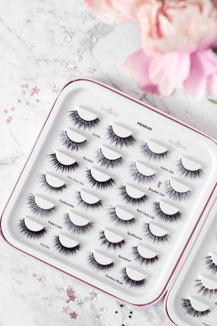 House Of Lashes | Lash Story Pro Edition
