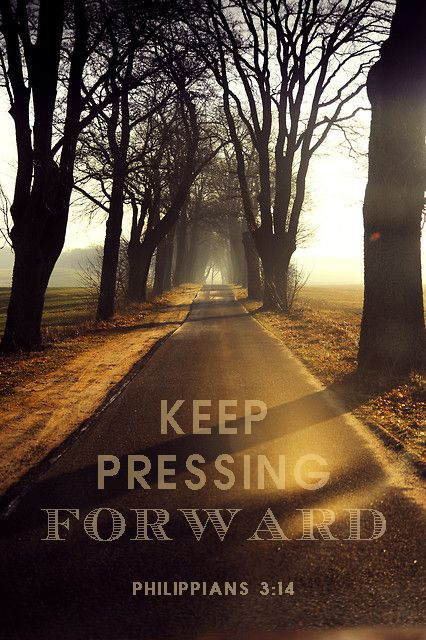 Philippians 3:14  Bible Verses // Encouraging Quotes  Pinterest  Never give up, Spiritual