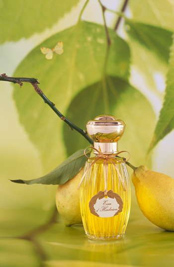 My Absolute favorite scent!!!!! No joke the most amazing smell ever. Smells like fresh pears in a summer rain...