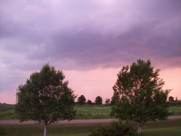 Pinks and Purples. What a sight.