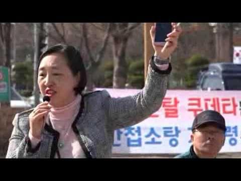 3월17일 대전태극기집회(한성주 장군, 인지연 변호사 등의 강연) 이화영 목사(2017년3월17일)