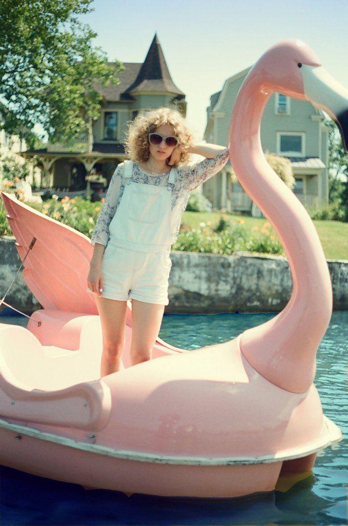 cruising on a flamingo boat.