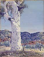 Albert Namatjira Ghost gum Albert Namatjira (1902-1959), Ghost gum , c.1948, watercolour. Image courtesy of the National Gallery of Australia: NGA 2008.241.